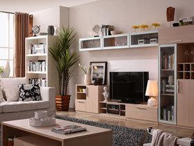 实用美观组合电视柜