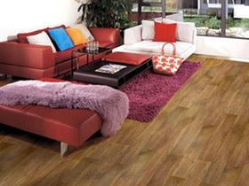 强化复合木地板 火之舞步地板