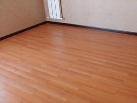 枫木色强化复合地板