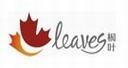 Leaves枫叶
