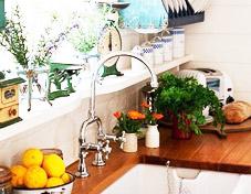 14款绿植扮靓厨房