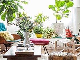 客厅绿植布置 15图给空间加点绿色