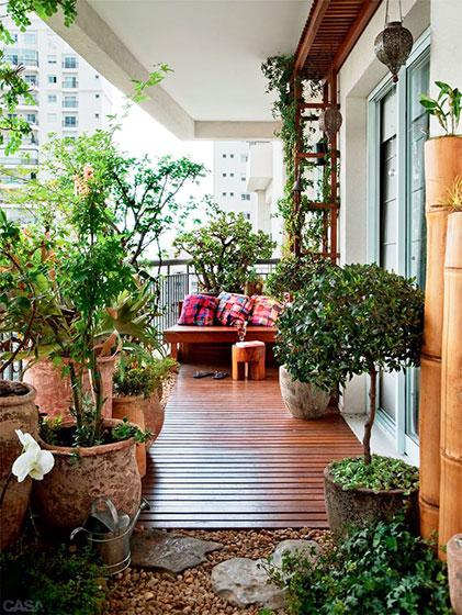 实用阳台绿植