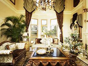 在家享受绿色 13图客厅绿植布置