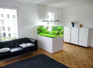 家庭鱼缸营造室内好风景