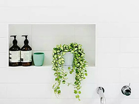 """乐享""""浴事"""" 11个卫生间植物摆放效果图"""