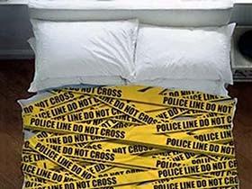 臥室里的夢想家  10款創意床設計布置圖