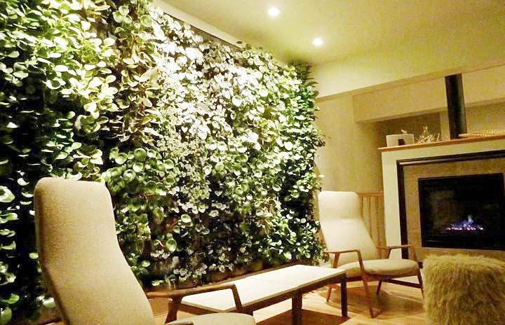 客厅植物背景设计图片