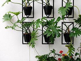 来自天然馈赠  10个绿植背景墙装修效果图