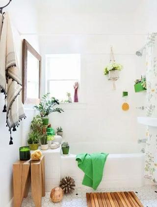 清新卫生间绿植摆放装饰图