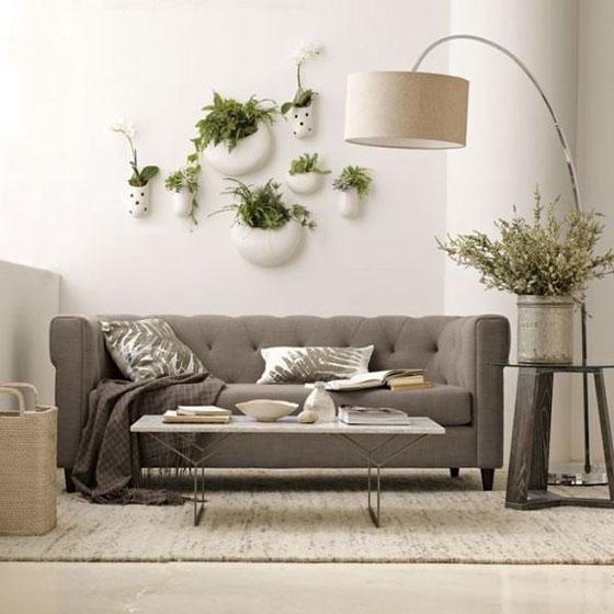 室内植物装修装饰效果图