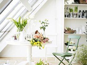 我的秘密花园  10个室内植物布置图片