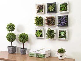 自然来装饰  10个植物背景墙效果图