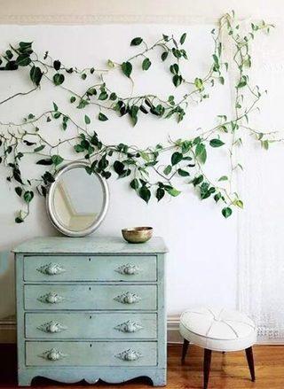 室内植物装饰柜设计图片