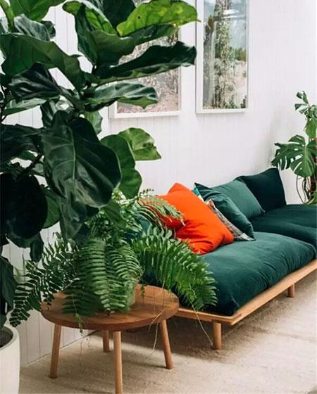 小户型丝绒沙发床设计图