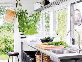 打造全自然家  10个室内植物布置图片
