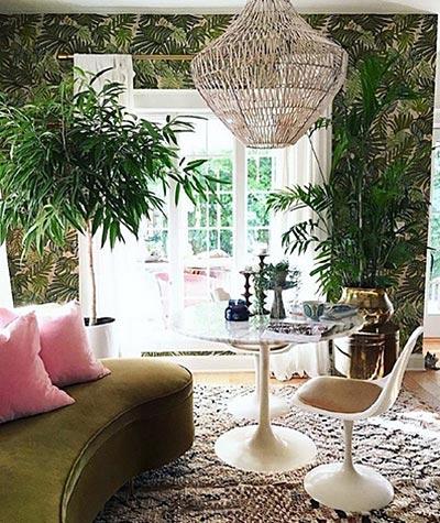 客厅植物设计欣赏图
