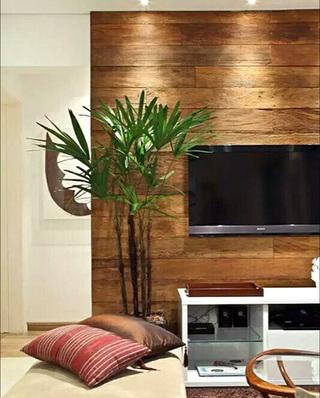 木质电视背景墙装修图片