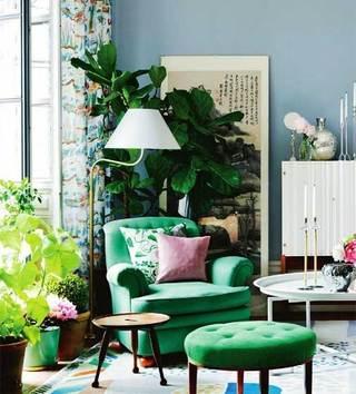 室内植物摆件设计实景图