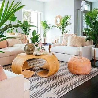 客厅绿植布置装修装饰效果图