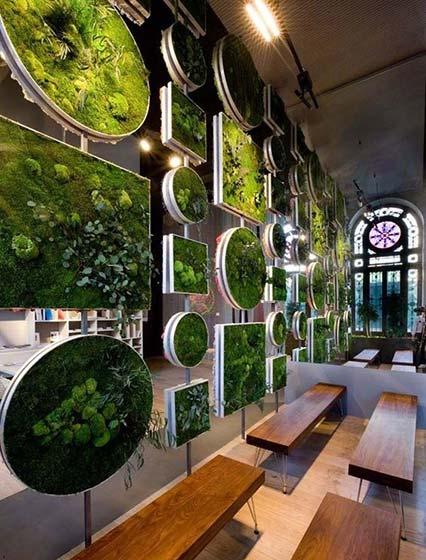 植物背景墙设计实景图