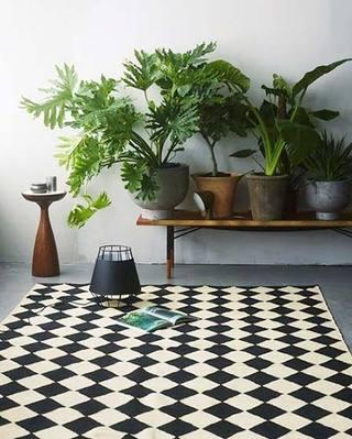 室内植物摆放装修布置图