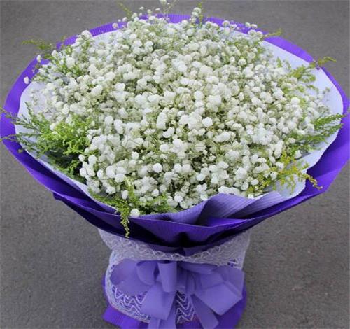 满天星花束唯美_满天星花的花语是什么 满天星花怎么养护