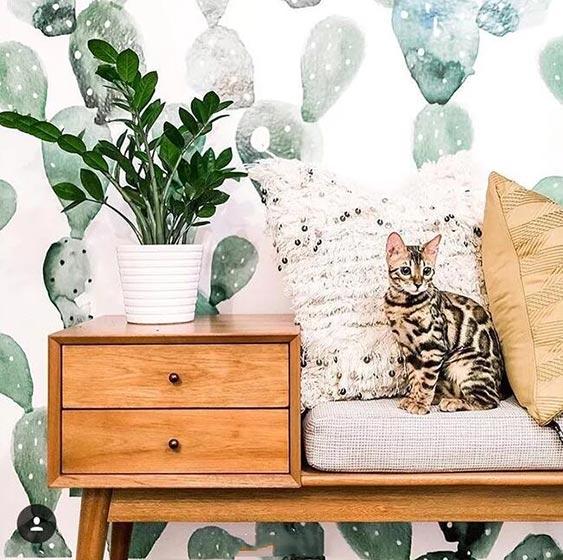 家装壁纸墙设计图片大全
