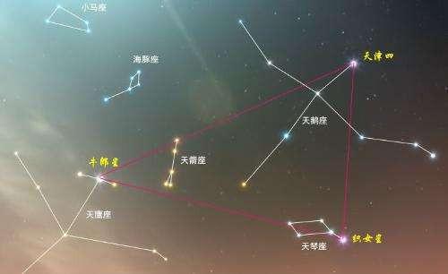 牛郎星属于什么星座啊 织女星属于什么星座_百