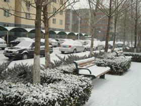 北京降雪气温骤降打破记录! 网友:刻不容缓买棉裤去