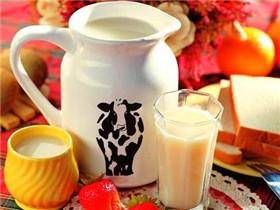 喝什么牛奶最好 牛奶什么时候喝好吸收