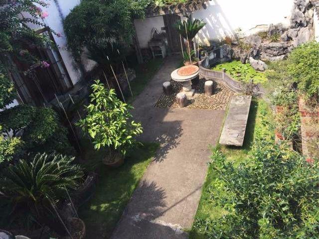 除了花草,院子里另一个角落种了一片小菜园,南瓜藤现在长得很茂盛图片