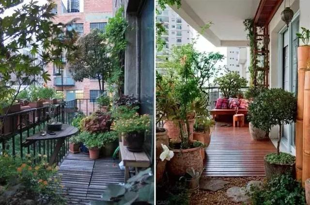把阳台变成小花园,清晨静座,冥想,再好不过.图片