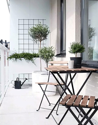 绿色清新阳台植物图片