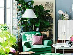 绿色环境家   10个室内植物摆件效果图