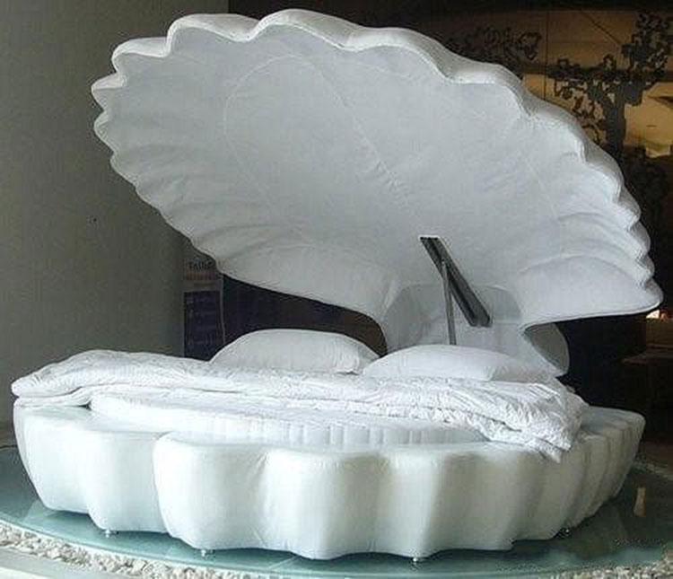 创意贝壳床构造图