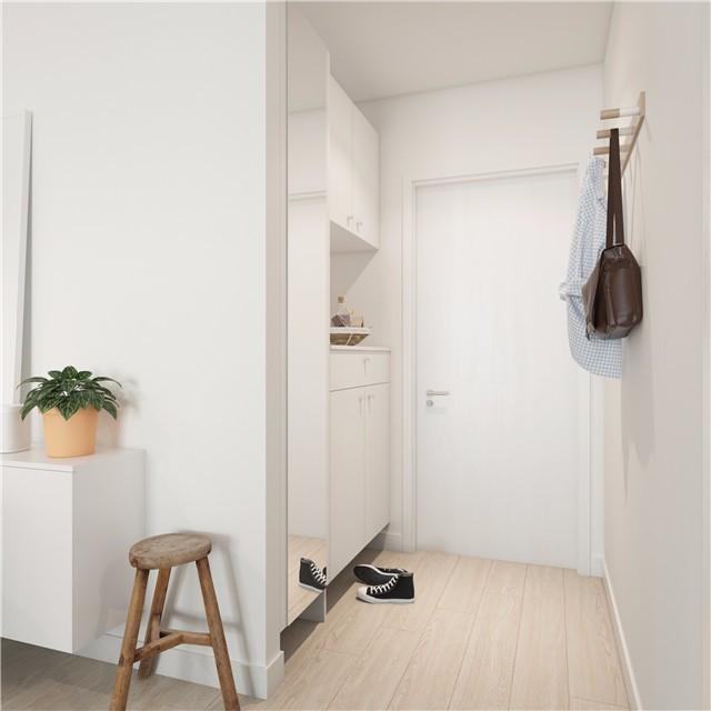 一居室小户型简约风玄关装修效果图