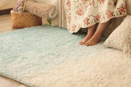 家里的地毯怎么清洗?清洗地毯的误区?