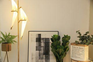 一居室北欧简约风公寓装修绿植装饰特写